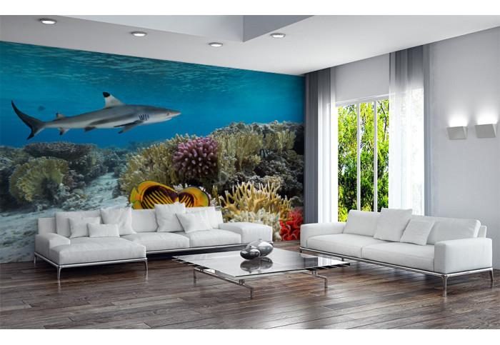 Фототапет  Кораловият риф