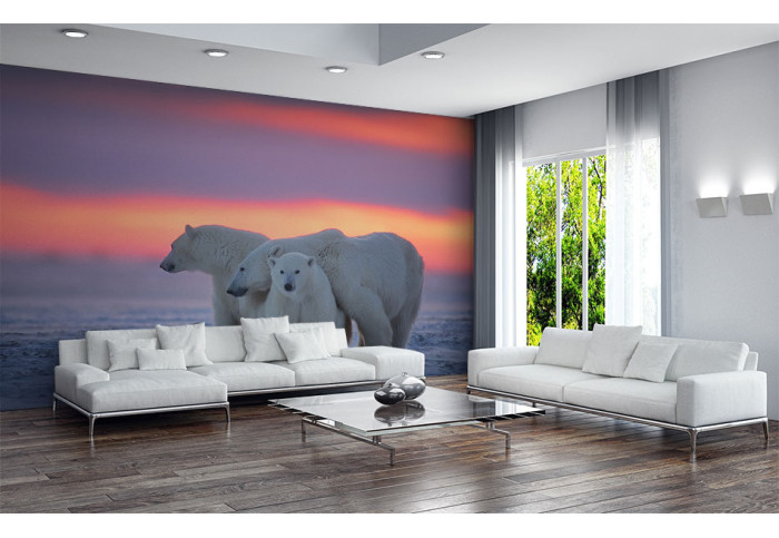 Фототапет Бели мечки
