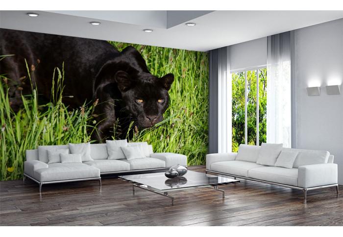 Фототапет Черна пантера