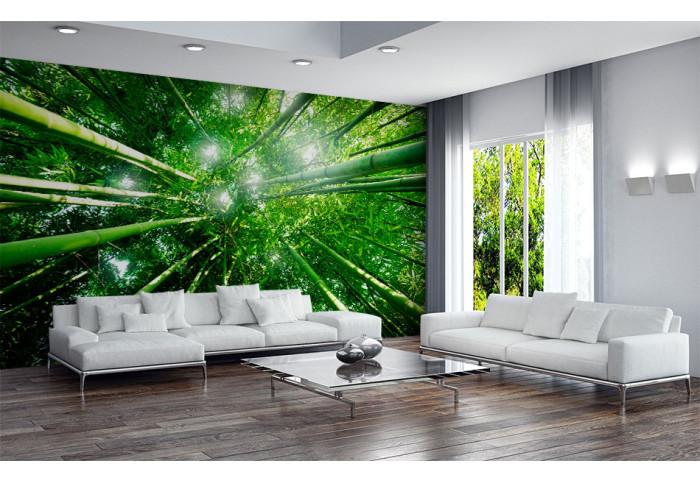 Фототапет В бамбуковата гора