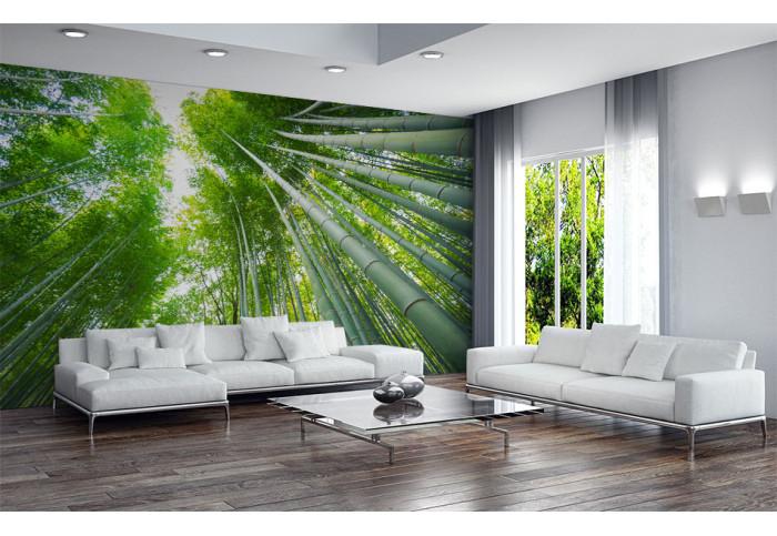 Фототапет Бамбукови дървета