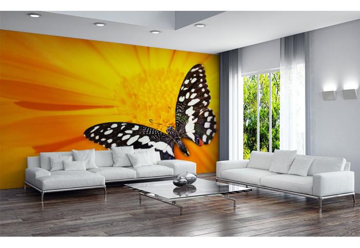 Фототапет  Жълто цвете и пеперуда