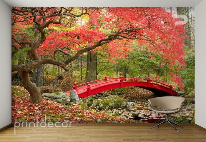 Дърво с червени листа