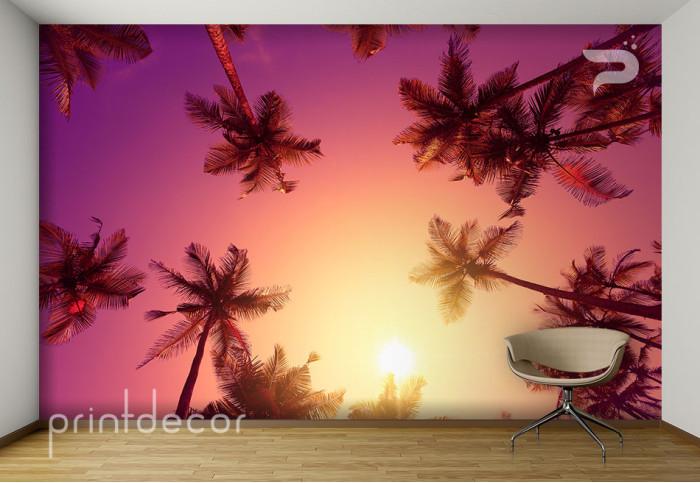 Палми и цветно небе