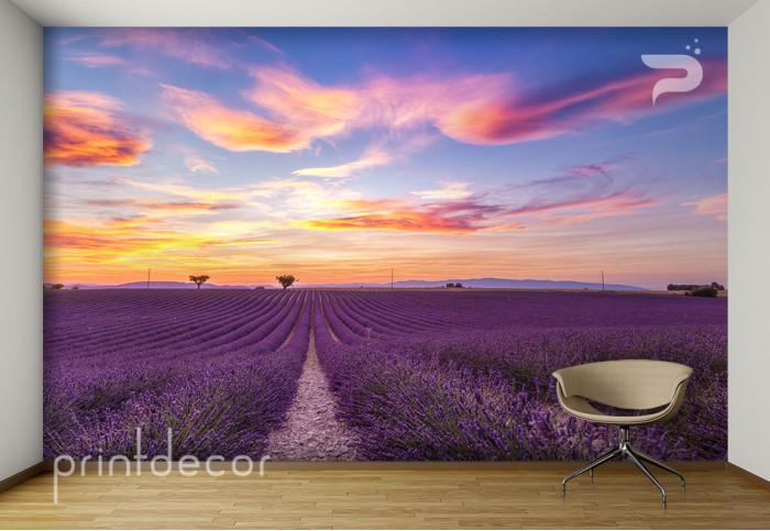 Залез над лавандулово поле във Франция